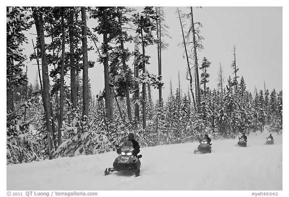 Snowmobilers. Yellowstone National Park (black and white)