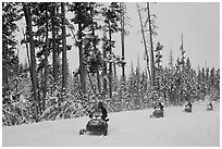 Snowmobilers. Yellowstone National Park, Wyoming, USA. (black and white)