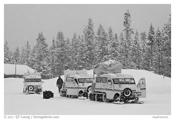 Snowcoaches and snow falling. Yellowstone National Park (black and white)