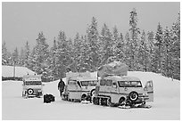 Snowcoaches and snow falling. Yellowstone National Park, Wyoming, USA. (black and white)