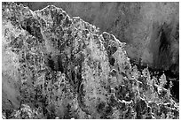 Rock wall in Grand Canyon of the Yellowstone. Yellowstone National Park, Wyoming, USA. (black and white)