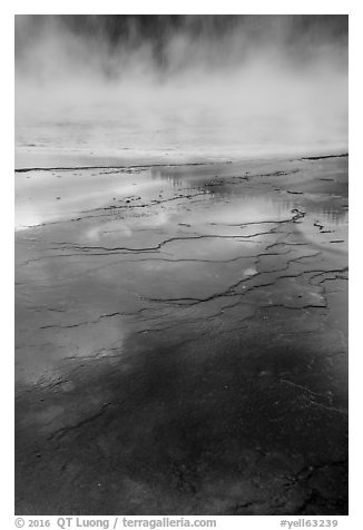 Microbial mat and steam, Grand Prismatic Springs. Yellowstone National Park (black and white)