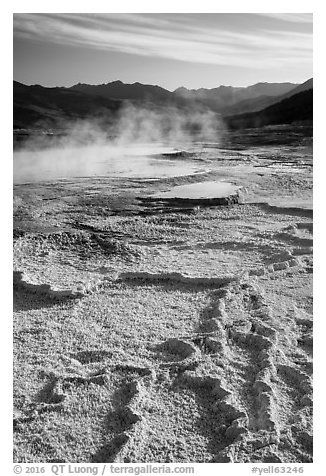 Main Terrace, Mammoth Hot Springs. Yellowstone National Park (black and white)