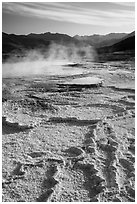 Main Terrace, Mammoth Hot Springs. Yellowstone National Park ( black and white)