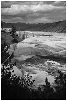 Main Terrace, afternoon, Mammoth Hot Springs. Yellowstone National Park ( black and white)