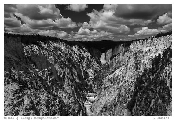 Grand Canyon of the Yellowstone from Artists Point. Yellowstone National Park (black and white)