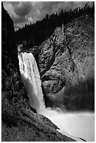 Lower Falls of the Yellowstone River from bottom. Yellowstone National Park ( black and white)