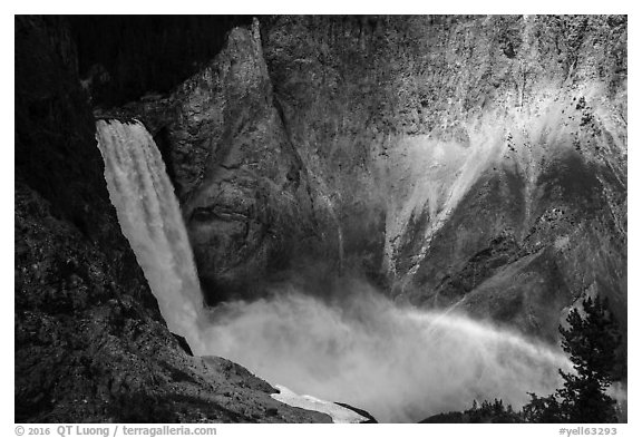 Lower Falls and rainbow, Grand Canyon of the Yellowstone. Yellowstone National Park (black and white)