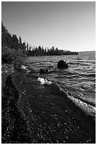 Lewis Lake Shore with black send. Yellowstone National Park ( black and white)