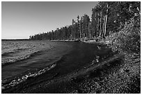 Lewis Lake and surf. Yellowstone National Park ( black and white)