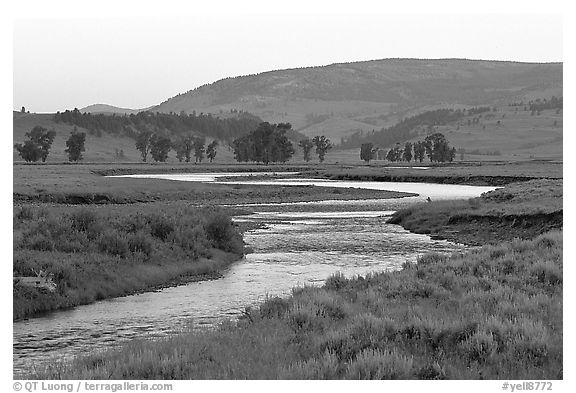 Soda Butte Creek, Lamar Valley, dawn. Yellowstone National Park (black and white)