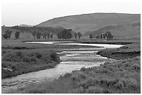 Soda Butte Creek, Lamar Valley, dawn. Yellowstone National Park, Wyoming, USA. (black and white)