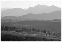 Backlit ridges of Absaroka Range from Dunraven Pass, early morning. Yellowstone National Park, Wyoming, USA. (black and white)