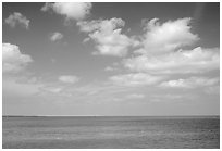 Sky and Elkhorn coral reef. Biscayne National Park, Florida, USA. (black and white)