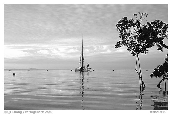Sailing in Biscayne Bay. Biscayne National Park (black and white)
