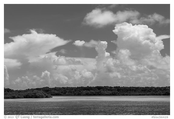 Barrier island, shallow waters, and afternoon clouds. Biscayne National Park (black and white)