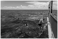 Snorkeling boat, snorklers and reef. Biscayne National Park, Florida, USA. (black and white)