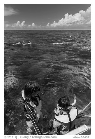 Snorkelers entering water. Biscayne National Park (black and white)