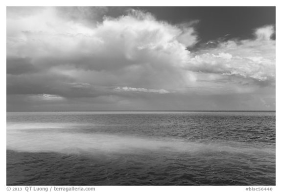 Sand bars, light and clouds, Atlantic Ocean. Biscayne National Park (black and white)