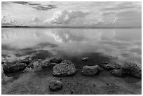 Rocks and Biscayne Bay reflections. Biscayne National Park, Florida, USA. (black and white)