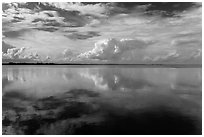 Clouds reflected in water, Biscayne Bay. Biscayne National Park ( black and white)