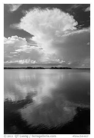 Cumulonimbus clouds, and mangrove-covered islets, Biscayne Bay. Biscayne National Park (black and white)