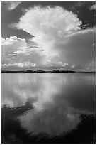 Cumulonimbus clouds, and mangrove-covered islets, Biscayne Bay. Biscayne National Park ( black and white)