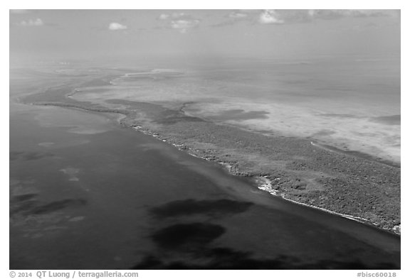 Aerial view of reef, Elliott Key, and Biscayne Bay. Biscayne National Park (black and white)