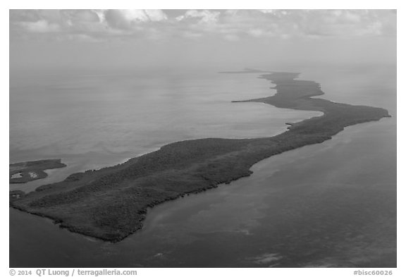Aerial view of barrier island keys. Biscayne National Park (black and white)