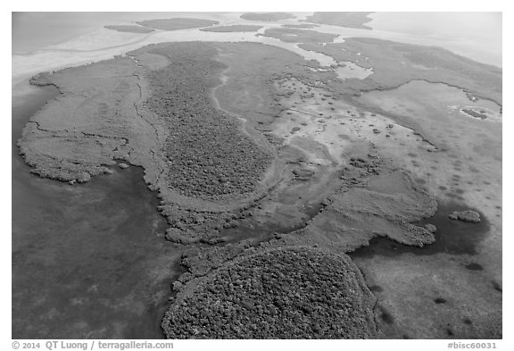 Aerial view of Totten Key and Jones Lagoon. Biscayne National Park (black and white)