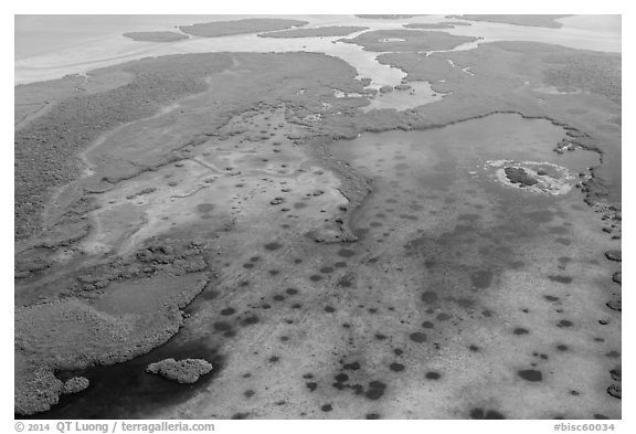 Aerial view of Jones Lagoon. Biscayne National Park (black and white)
