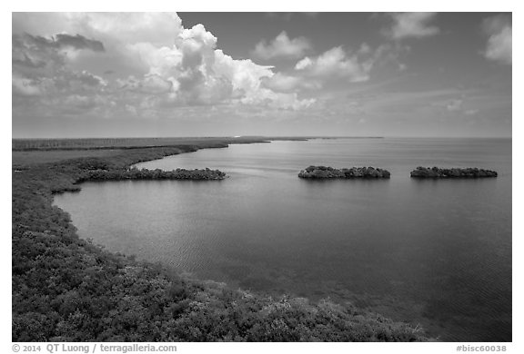 Aerial view of mainland coast near Convoy Point. Biscayne National Park (black and white)
