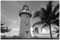 Palm tree and lighthouse, Boca Chita Key. Biscayne National Park ( black and white)