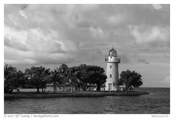 Trees and lighthouse, Boca Chita Key. Biscayne National Park (black and white)