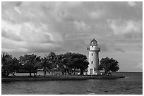 Trees and lighthouse, Boca Chita Key. Biscayne National Park ( black and white)