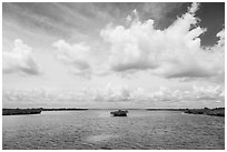 Channel with mangrove islet. Biscayne National Park ( black and white)