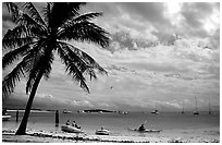 Beach and boats moored in Tortugas anchorage. Dry Tortugas National Park, Florida, USA. (black and white)