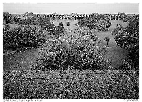 Courtyard of Fort Jefferson with lawn and trees. Dry Tortugas National Park (black and white)