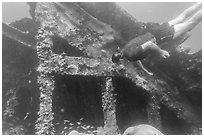 Free diver exploring Windjammer Wreck. Dry Tortugas National Park, Florida, USA. (black and white)