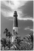 Palm trees and Dry Tortugas Light Station, Loggerhead Key. Dry Tortugas National Park, Florida, USA. (black and white)