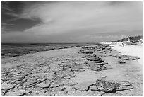 Beach and reef, Loggerhead Key. Dry Tortugas National Park, Florida, USA. (black and white)