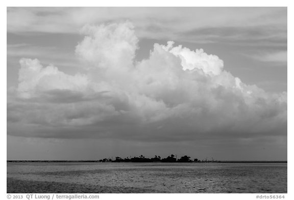 Vegetation-covered Long Key below tropical cloud. Dry Tortugas National Park (black and white)
