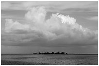 Vegetation-covered Long Key below tropical cloud. Dry Tortugas National Park, Florida, USA. (black and white)