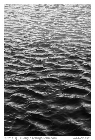 Reflections in moat. Dry Tortugas National Park (black and white)