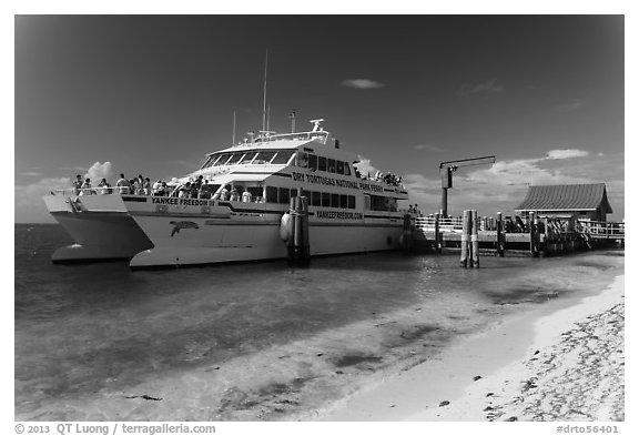 Yankee Freedom Ferry. Dry Tortugas National Park (black and white)