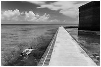 Snorkeling next to Fort Jefferson seawall. Dry Tortugas National Park, Florida, USA. (black and white)