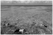 Snorkelers and reef, Garden Key. Dry Tortugas National Park, Florida, USA. (black and white)