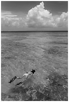 Woman snorkeling. Dry Tortugas National Park, Florida, USA. (black and white)