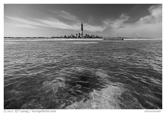 Coral head and Loggerhead Key light. Dry Tortugas National Park (black and white)