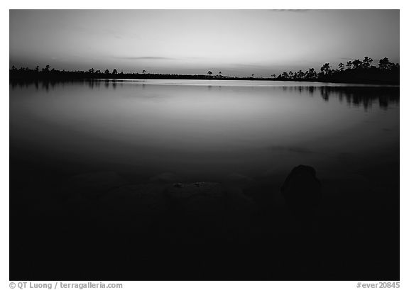 Pine Glades Lake, dusk. Everglades  National Park (black and white)